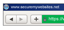 ssl in browser